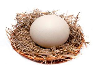 Страусиное яйцо для шара пасхального топиария
