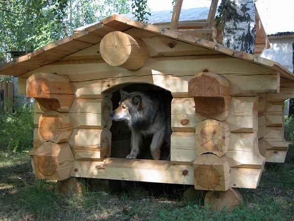 Комфорт и красота дешево: будка для собаки своими руками