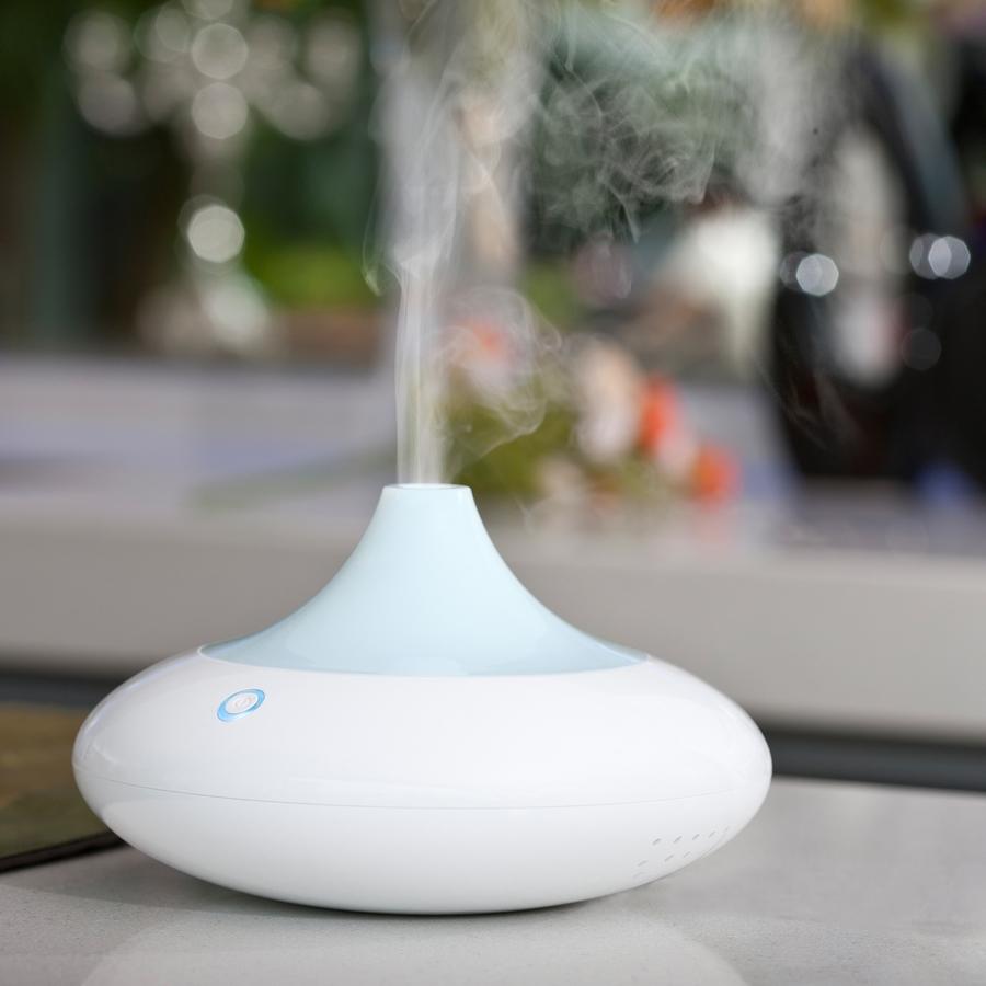 На рынке существуют дизайнерские модели устройств для увлажнения воздуха