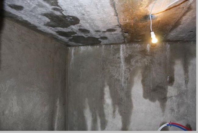 Сырость в гараже от повышенной влажности